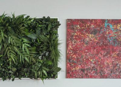 Ein Kleines Stück Vom Paradies: Neu – Pflanzenbilder Bei Raumausstattung Lensing